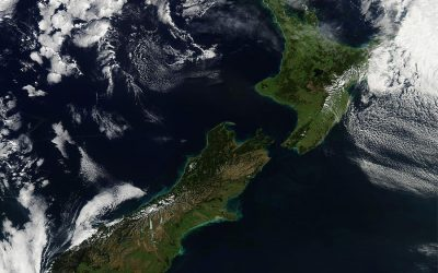 Progressive is Normal for New Zealand